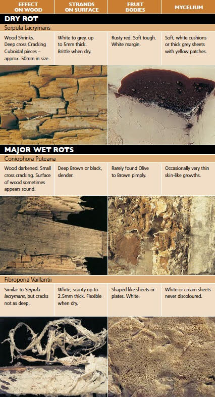 An infographic with wood rot and dry rot on facia board in kansas city
