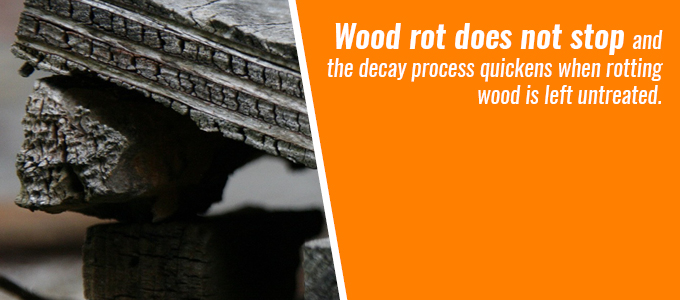 Wood rot does not stop. The decay process quickens when wood rot is left untreated.